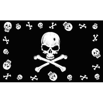 Pirate Flag - Skull & Bones w/ Border