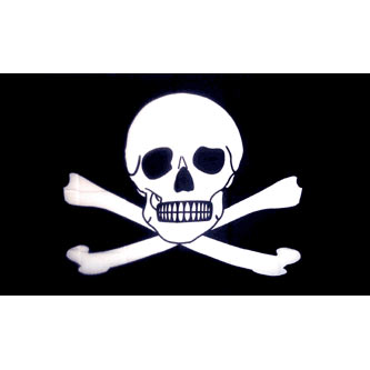Pirate Flag - Poison Skull & Bones