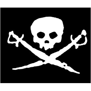 Pirate Sticker - Skull & Swords
