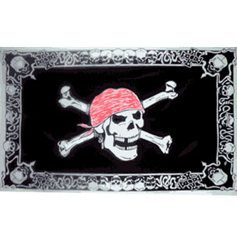 Pirate Flag - Skull w/ Skull Border