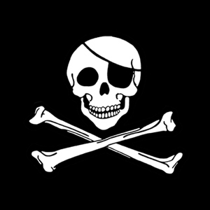 Classic Jolly Roger. Ladies Pirate Shirt